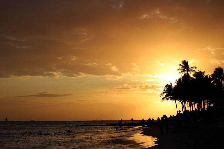 Hawaiian Sunset 🌅🌴 Sun Sunset Hawaii Hawaiian Hawaiishots Hawaiilife Hawaii Sunset Hawaii Life Island Islandlife Palm Trees Palm Tree Tree Trees Beach Beach Photography Ocean
