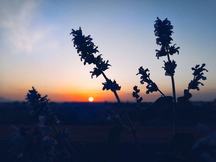 tramonti EyeEm