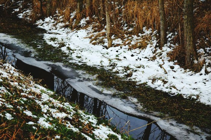 Tree Water At The River Outdoors Nature High Angle View Day Beauty In Nature Winter Cold Temperature Stream - Flowing Water January 2017 How's The Weather Today? Winter 2017 Wartberg Beauty In Nature Winter Water_collection Frozen Tree_collection