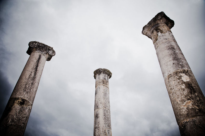 Abandoned Ancient Ancient Civilization Animal Themes Architectural Column Bad Condition Damaged Day Low Angle View Nature No People Old Ruin Outdoors Sky Weathered