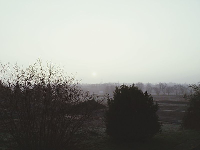 Winter Sunset Bavaria Snow Tree Winter Day Sonne Wolke Nebel Samsung Galaxy S5