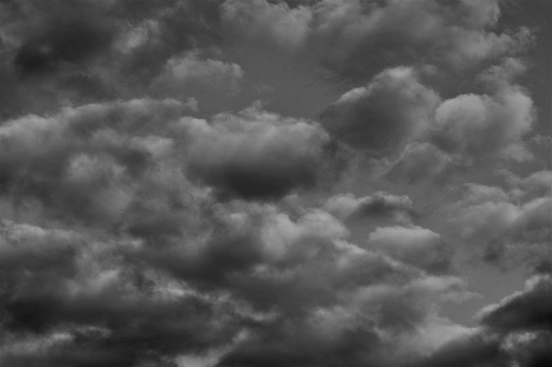 Dramatic clouds and sky in B&W. Sky Cloud - Sky Blackandwhite Vanilla Filter Cloudscape Dramatic Sky Meteorology Idyllic Ominous Storm Tranquility Tranquil Scene Nature Beauty In Nature Scenics - Nature No People Backgrounds Full Frame White Color Dark Clouds Shape Pattern Environment Atmospheric Mood Day Outdoors Overcast Low Angle View Selective Focus Underneath View