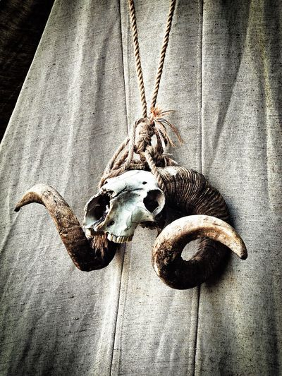 Close-up Death Hanging Horned Horned Animals Horns Knot Knotted Mat Material No People RAM Rope Sign Skull Symbol Symbolic  Tent
