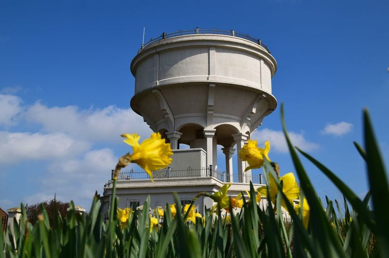 Withernsea Spring Water Tower Rimswell East Riding Of Yorkshire Daffodils Sunny Blue Sky Urban Spring Fever Blue Wave