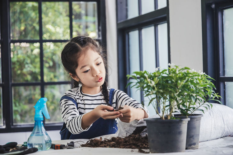 Girl looking at potted plant on table