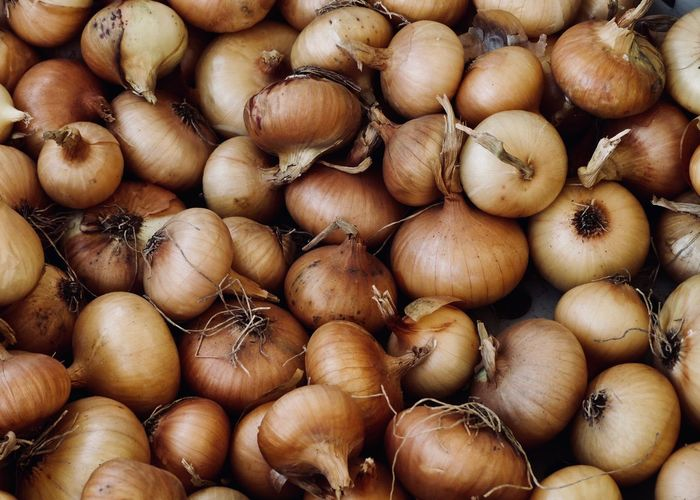 Onions on Farmers Market Farmers Market Abundance Background Texture Backgrounds Close-up Food Food And Drink For Sale Freshness Full Frame Healthy Eating Healthy Food High Angle View Large Group Of Objects Market Onion Pattern Raw Food Retail  Still Life Texture Vegetable Wellbeing The Foodie - 2019 EyeEm Awards