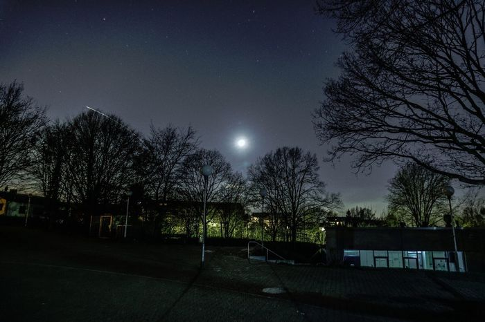 Night Moon Sky Tree Star - Space No People Outdoors Astronomy Nacht Nachtfotografie Sony A6000 Leverkusen Star Field Beauty In Nature Nature Mond Sternenhimmel Sterne  Himmel Space