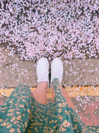Sống nhu một cơn gió Seoul, Korea Korea Bloom Flower Human Foot Women First Eyeem Photo
