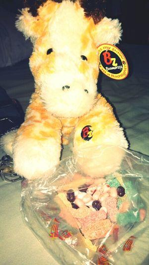 The #giraffe My Boyfriend Got Me C: