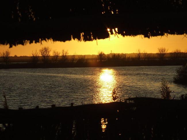 Calm Doñana Idyllic La Algaida Lake Orange Color Pinar De La Colonia Monte Algaida Reflection Rippled Silhouette Sun Sunset Tranquil Scene Water