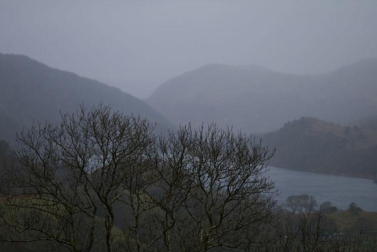 Lake Water Tree Mountain Fog Forest Sky Overcast Weather Atmospheric Mood Foggy Mist Tree Area