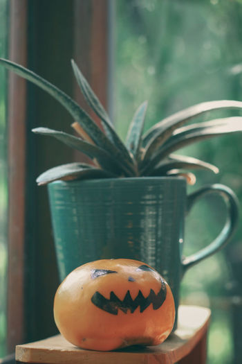 Close-up of pumpkin on potted plant