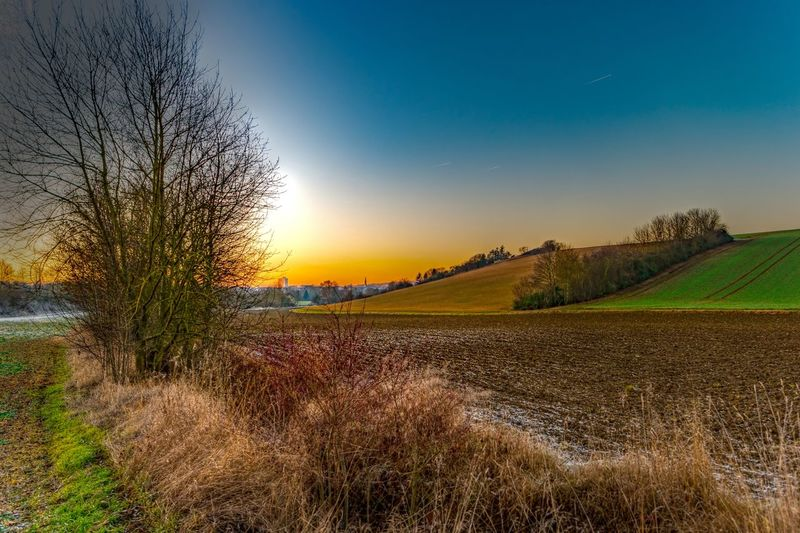 Agricultural landscape in the vicinity of Würzburg. This photo was taken in December 2016 and displays the rural scenery slightly covered with frost. Frost Sunset_collection Agriculture Bare Tree Beauty In Nature Day Field Grass Growth Landscape Nature No People Outdoors Rural Scene Scenics Sky Sunset Sunset #sun #clouds #skylovers #sky #nature #beautifulinnature #naturalbeauty #photography #landscape Tranquil Scene Tranquility Tree Vicinity Of Würzburg