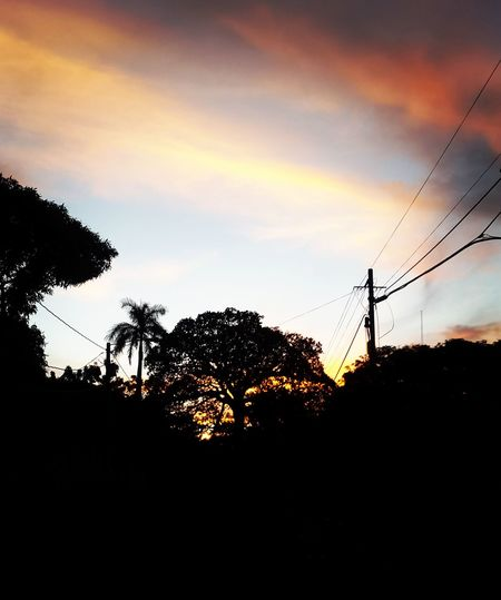 Silhouette Tree Sunset Sky Low Angle View Tranquil Scene Scenics Tranquility Outline Cloud Beauty In Nature Cable Nature Power Line  Calm Solitude Dark Cloud - Sky Outdoors