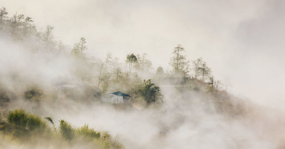 House in the clouds Sapa, Viet Nam Country Life Lanscape Lanscape Photography Mountain Sky And Clouds Stockphotography Travel Photography Vietnamphotography