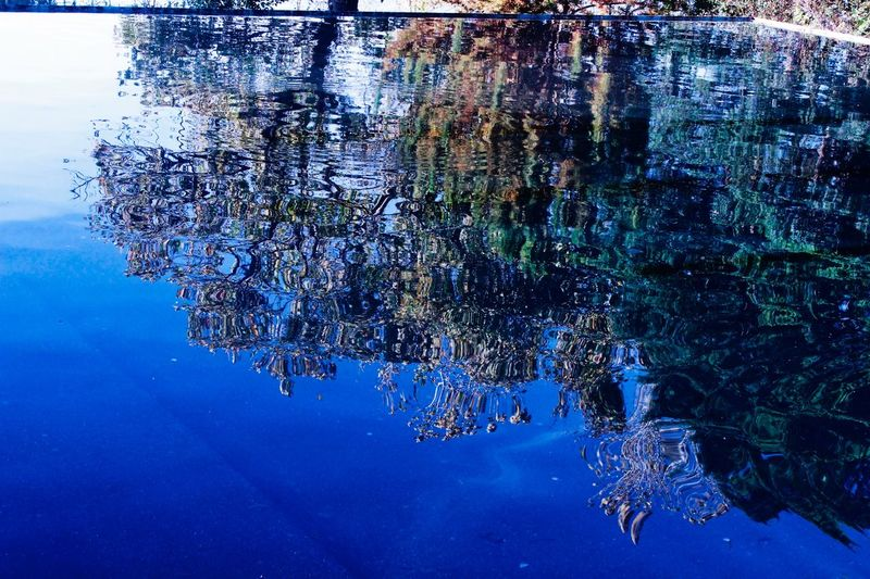Reflection pool Water Reflection Blue Underwater No People Nature Sea Life