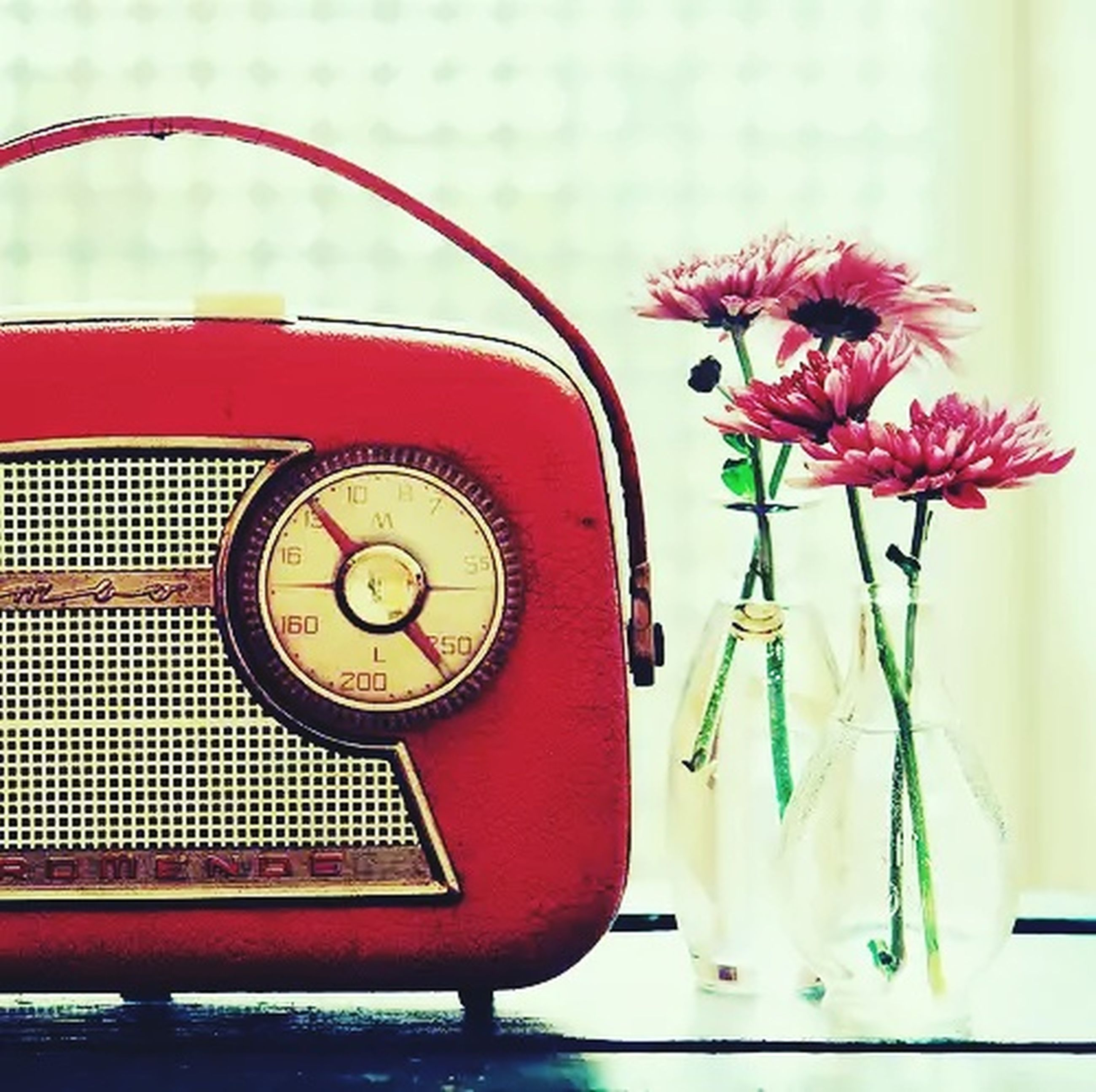 red, close-up, flower, time, focus on foreground, indoors, clock, communication, text, no people, old-fashioned, pink color, technology, number, day, decoration, clock face, western script, retro styled, accuracy