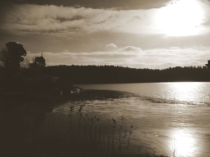 Sweden Relaxing Silhouette Monochrome Nature Sunset Silhouettes Ocean Landscape