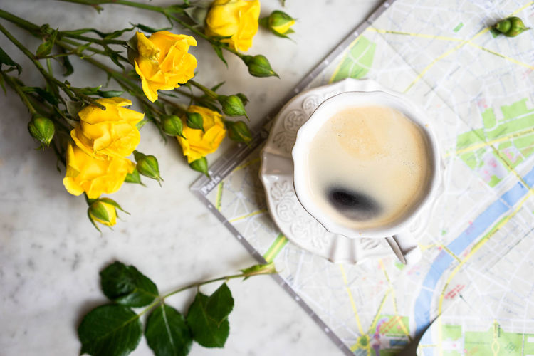 cup of coffee and yellow roses on a map and marble background in a cafe Break Breakfast Breakfast Cafe Close-up Coffee Daffodil Day Flower Food And Drink Fragility Freshness Good, Bad And Dirty Healthy Eating High Angle View Indoors  Leaf Map Morning No People Paris Paris Map Planing Trip Yellow