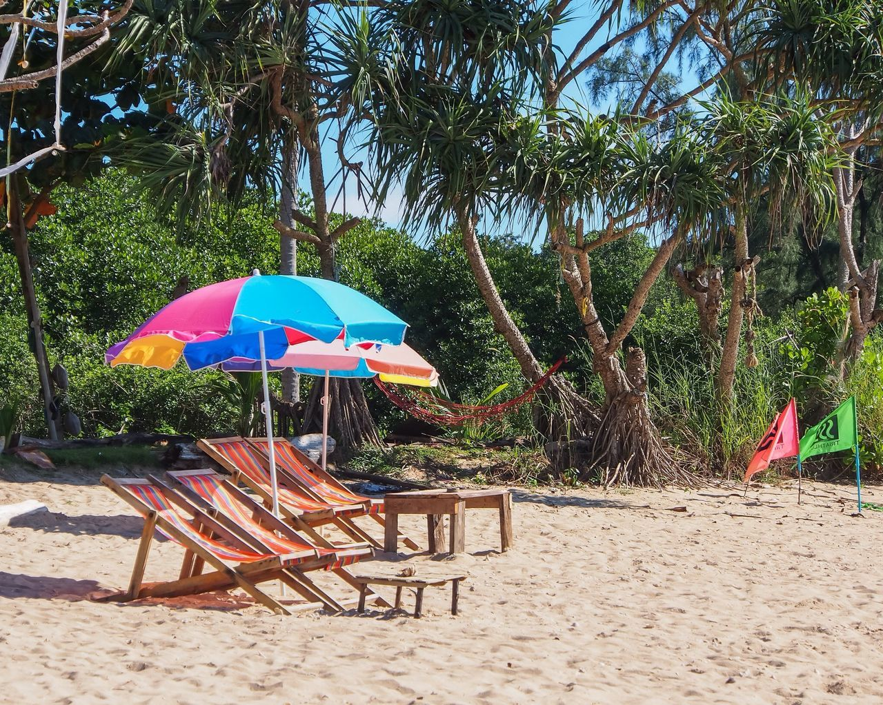 sand, beach, tree, day, nature, vacations, outdoors, growth, beauty in nature, shelter, real people, sea, sky