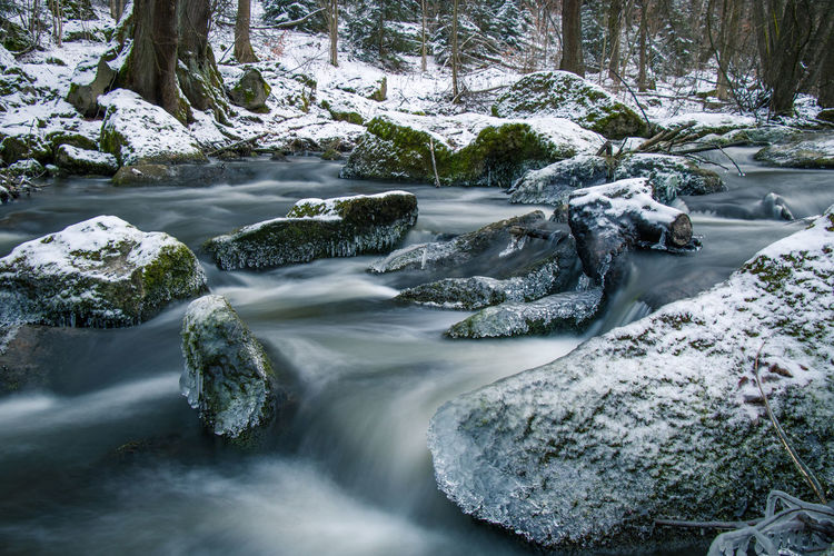 EyeEm Nature Lover Winter Beauty In Nature Blurred Motion Cold Temperature Day Eye4photography  Flowing Water Forest Long Exposure Motion Nature No People Outdoors Rapid River Rock - Object Scenics Tranquil Scene Tranquility Tree Water Waterfall