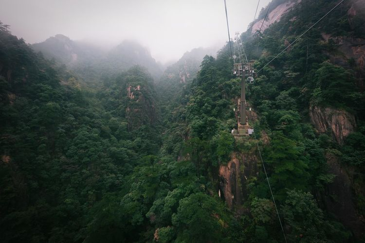 Misty mountain scapes as we travelled down from the top of Mt Huangshuan, China Eye Em Nature Lover Nikon D750 Beauty In Nature China Day Fog Foggy Forest Growth Hanging Landscape Mist Moody Mountain Mt Huangshuan Nature No People Outdoors Overhead Cable Car Scenics Sky Tranquil Scene Tranquility Tree Week On Eyeem EyeEm Ready   Shades Of Winter