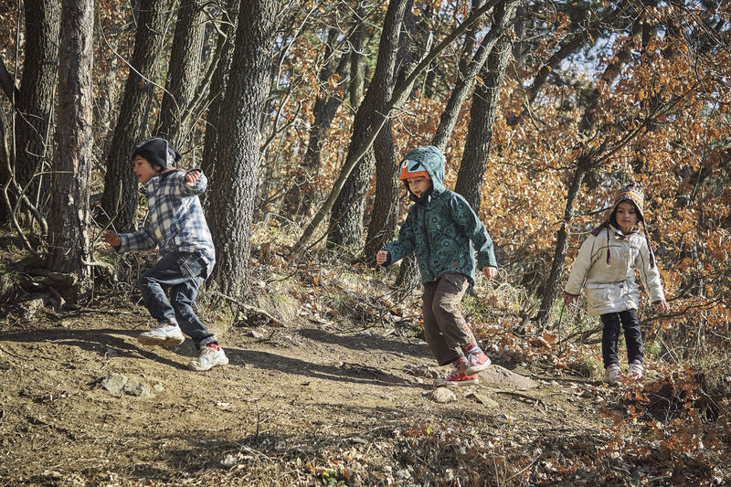 Running Boys Casual Clothing Child Childhood Day Family Forest Full Length Girl Land Leisure Activity Males  Men Nature Outdoors Plant Real People Sister Son Togetherness Tree Tree Trunk Trunk WoodLand