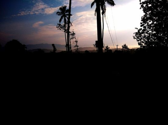 EyeEmNewHere Beauty In Nature Cloud - Sky Day Electricity Pylon Field Landscape Nature No People Outdoors Scenics Silhouette Sky Sunset Technology Tranquil Scene Tranquility Tree