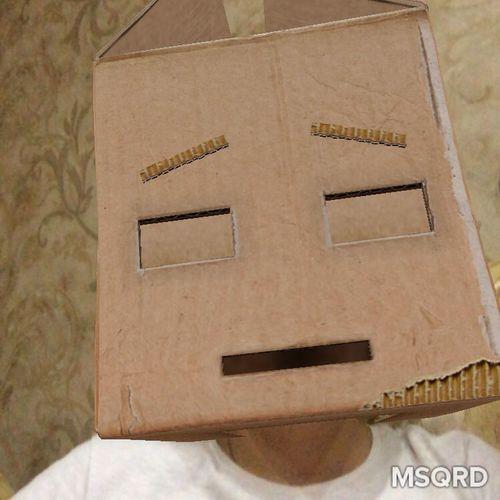 Box Head Box