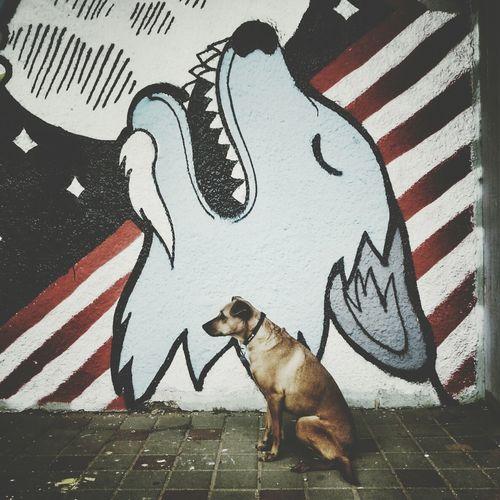 Side view of dog on sidewalk against graffiti on wall