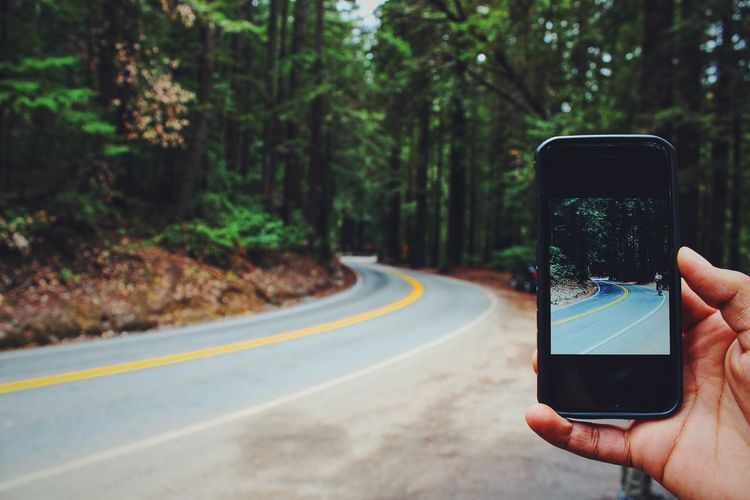 Cropped Image Of Person Photographing Road Amidst Trees
