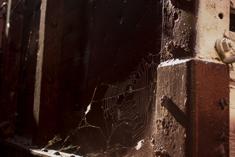 Close-up of old spider web on rusty metal