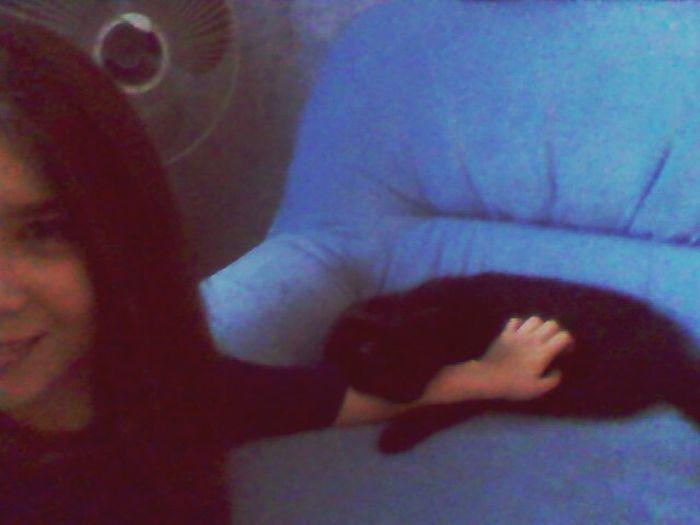 Это счастье уснуло у меня на руке) Relaxing Cat♡ Lovley  First Eyeem Photo