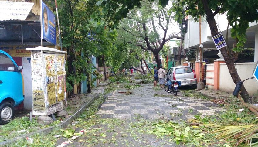 Cyclone Vardah🌪🌫 hitted Chennai...and left the foot steps here!!!!👣🍃🍃🍃 with massive destruction.Transportation Mode Of Transport Land Vehicle Tree Outdoors Car Day No People Architecture Nature Cyclone Strom Tamilnadu Nature Destruction Trees Falling Destruction In Nature