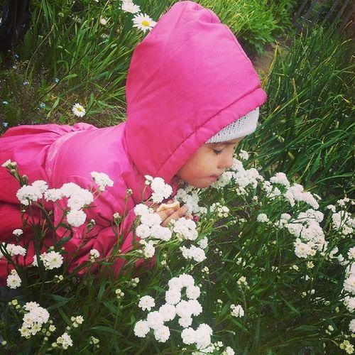 нюхает_цветочки