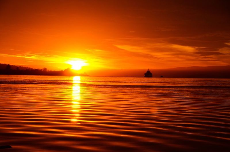 Ripple Sunset Water Sea Orange Color Sun Sky Tranquility Horizon Over Water Outdoors Norway EyeEm Best Shots - Nature Sunset_collection Fjord In Oslo Oslo Oslo Norway Eye Em Nature Lover Eye Em Nature Collection Vibrant Color Sunbeam