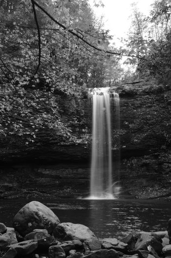 Water Tree Long Exposure Rock Forest Plant Rock - Object Flowing Water Solid Waterfall Motion Nature Blurred Motion Scenics - Nature Beauty In Nature Land No People Day Flowing Outdoors Power In Nature Falling Water Rainforest Black And White Black And White Photography