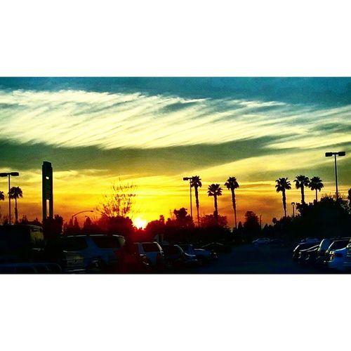 Sunset Losangeles California Besiktas Beşiktaşk Palms Sky Clouds Turkishgram Istanbul