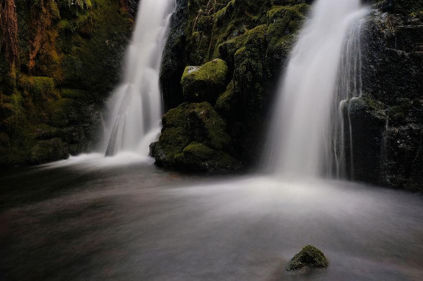 Venford Falls Dartmoor Venford Falls EyeEm Selects South Hams Devon Waterfall Tree Motion Power In Nature Long Exposure Rapid Flowing Water Flowing Running Water Dam Reservoir