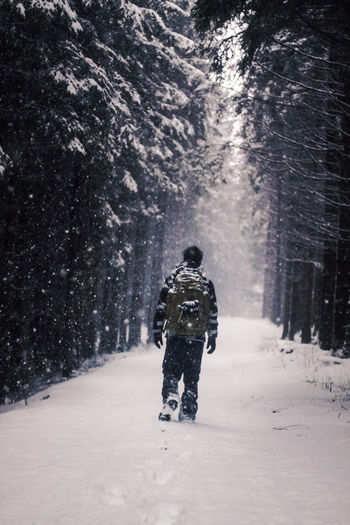 Rear view of man walking on snow covered forest