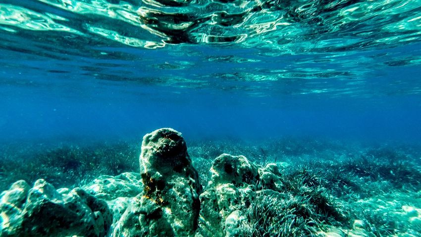 Water Sea Underwater UnderSea Nature Beauty In Nature Blue Rock - Object Adventure Sport Coral Swimming Solid Aquatic Sport Outdoors Rock Day Sea Life Scuba Diving Turquoise Colored