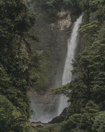 Hikong Bente Tree Water Spraying Waterfall Motion Long Exposure Sky Flowing Water Dripping Stream - Flowing Water Falling Water Power In Nature Splashing Running Water Rainfall Wet Stream