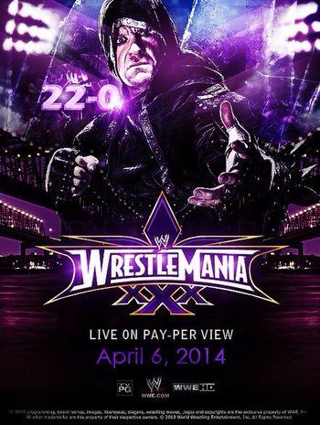 Wrestlemania Wrestling Fight