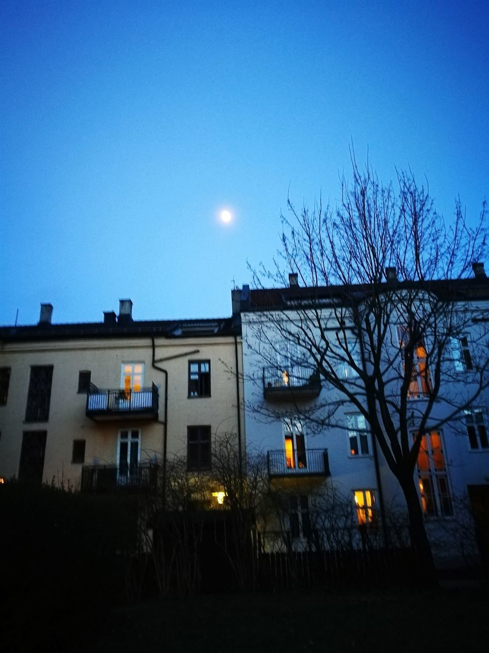 moon, bare tree, building exterior, night, illuminated, built structure, architecture, house, no people, clear sky, outdoors, sky, tree, nature, astronomy