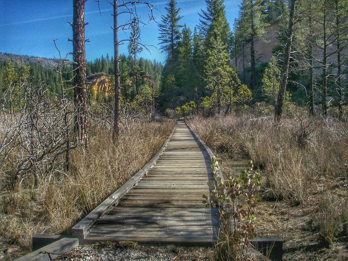 Come take a walk with me. State Park  Malokoff Diggins Hydraulic Goldmining California Unnatural Beauty Marshland  Marshlands