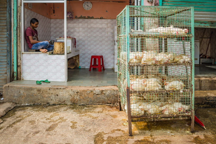 Woman sitting at market stall