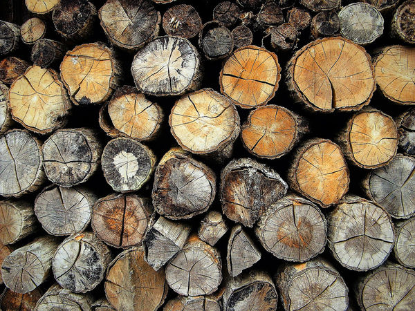 Backgrounds Brown Colour Day Elding Firewood Fuelwood Full Frame Heap Large Group Of Objects Log No People Outdoors Pattern Pile Stack Stick Timber Wood Fuel Woodpile