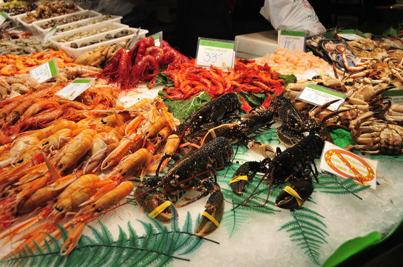 Food Food And Drink Retail  Seafood Market Freshness Choice For Sale Variation Incidental People Healthy Eating Market Stall Business Crustacean Abundance Animal Fish Meat Wellbeing Indoors  Fish Market Retail Display
