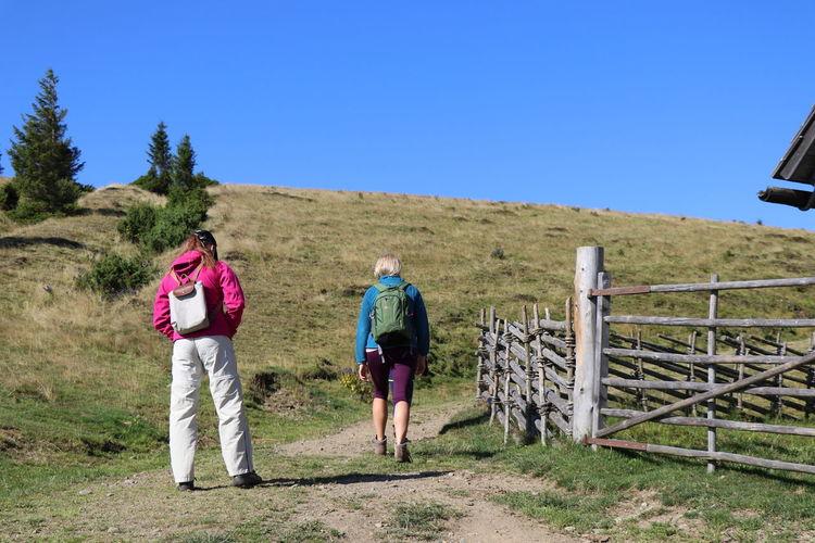 Rear view of friends walking on field against clear sky