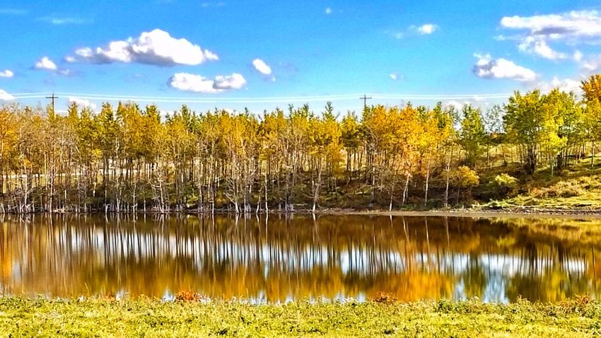 Water Tranquil Scene Sky Autumn Tree Beauty In Nature Lake Change Non-urban Scene Cloud Reflection Cloud - Sky Outdoors